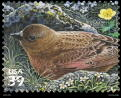 Brown-capped  Rosy-finch Postage Stamp
