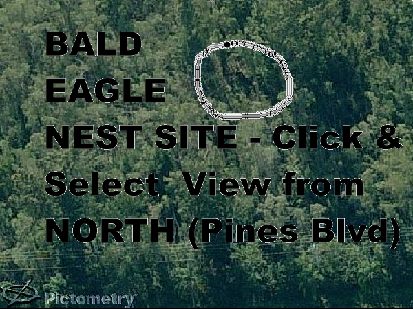 Eagle Nest from air